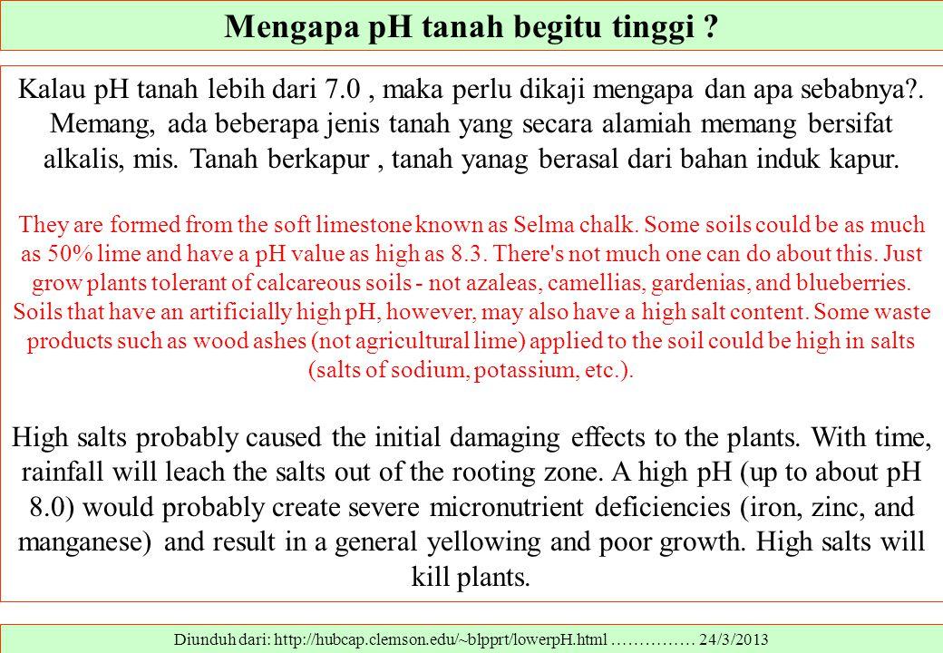 Mengapa pH tanah begitu tinggi ? Diunduh dari: http://hubcap.clemson.edu/~blpprt/lowerpH.html …………… 24/3/2013 Kalau pH tanah lebih dari 7.0, maka perl