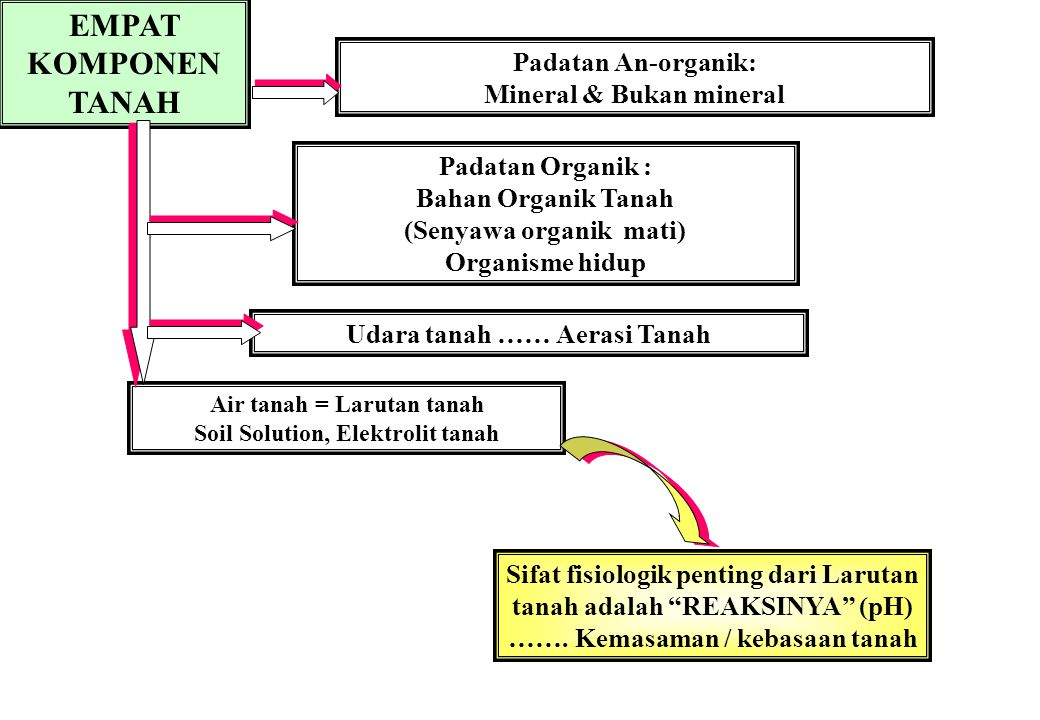 EMPAT KOMPONEN TANAH Padatan An-organik: Mineral & Bukan mineral Padatan Organik : Bahan Organik Tanah (Senyawa organik mati) Organisme hidup Udara ta