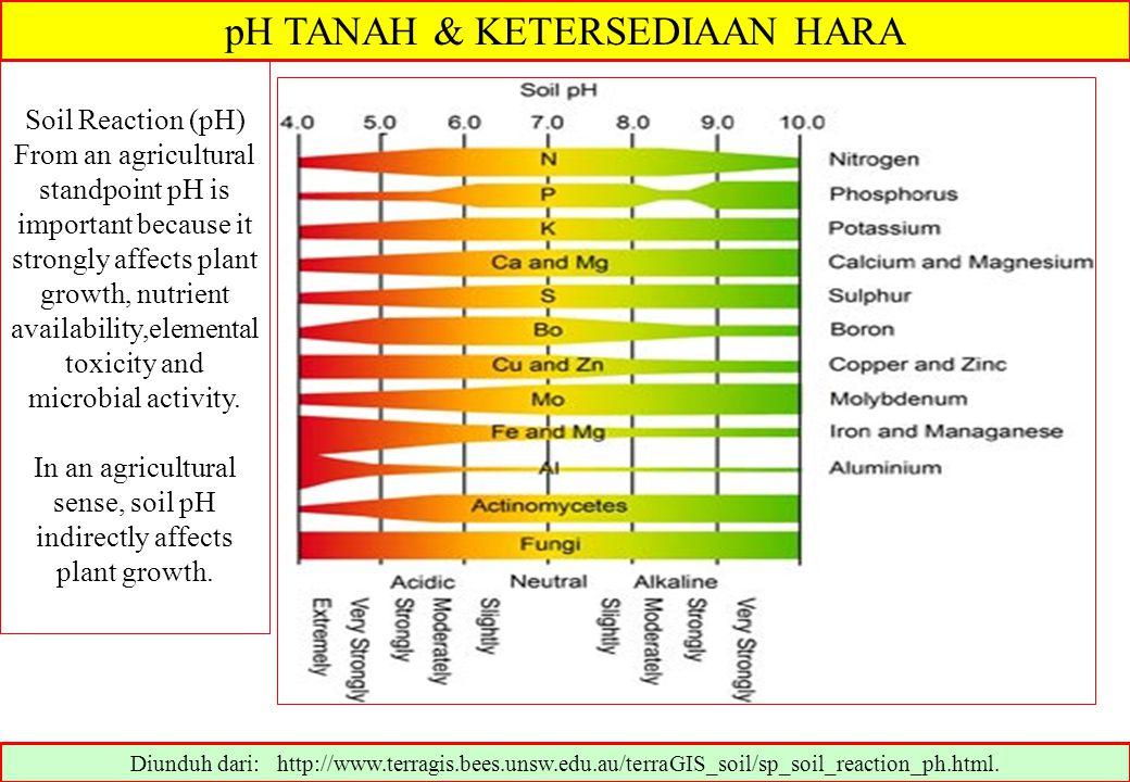 pH TANAH & KETERSEDIAAN HARA Diunduh dari: http://www.terragis.bees.unsw.edu.au/terraGIS_soil/sp_soil_reaction_ph.html. Soil Reaction (pH) From an agr