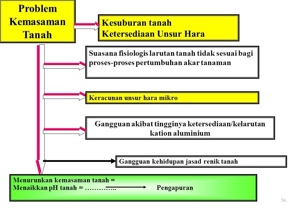 54 Problem Kemasaman Tanah Kesuburan tanah Ketersediaan Unsur Hara Suasana fisiologis larutan tanah tidak sesuai bagi proses-proses pertumbuhan akar t