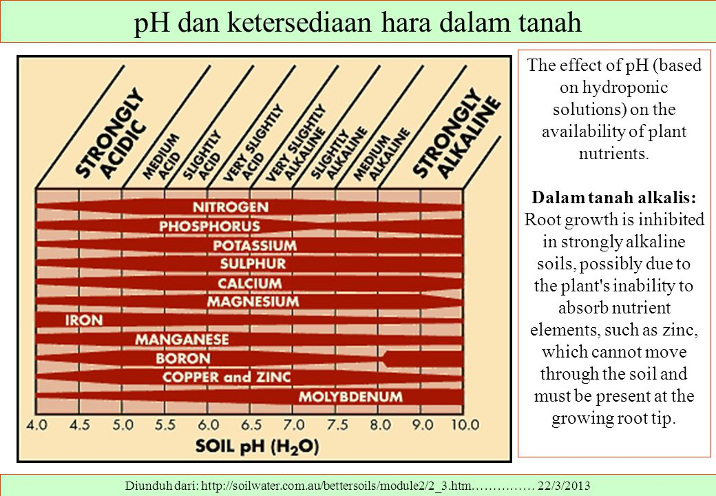 Diunduh dari: http://soilwater.com.au/bettersoils/module2/2_3.htm…………… 22/3/2013 The effect of pH (based on hydroponic solutions) on the availability of plant nutrients.