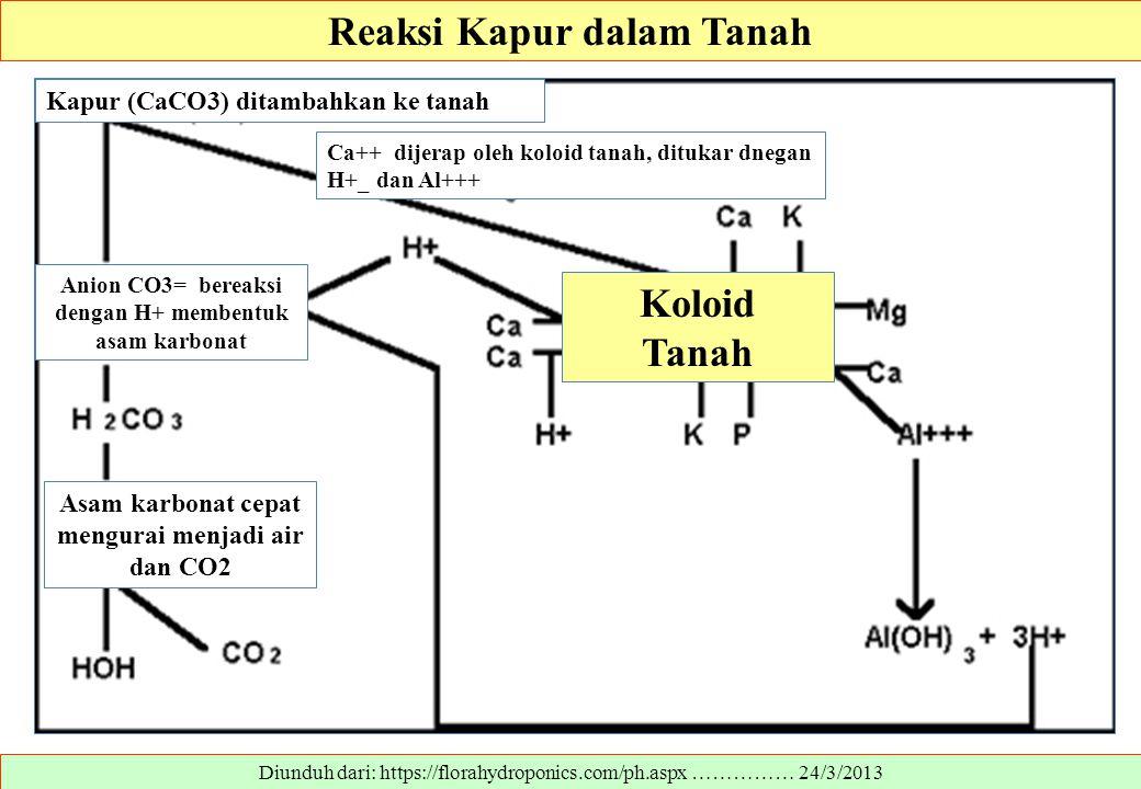 Diunduh dari: https://florahydroponics.com/ph.aspx …………… 24/3/2013 Reaksi Kapur dalam Tanah Koloid Tanah Asam karbonat cepat mengurai menjadi air dan