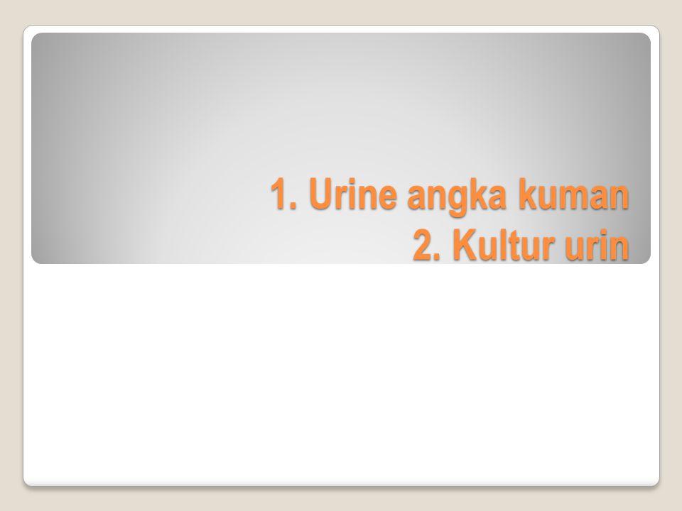 1. Urine angka kuman 2. Kultur urin