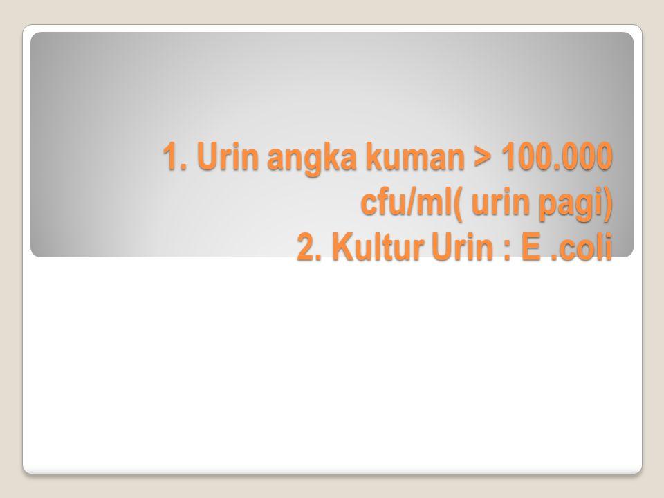 1. Urin angka kuman > 100.000 cfu/ml( urin pagi) 2. Kultur Urin : E.coli