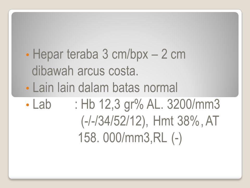 Hepar teraba 3 cm/bpx – 2 cm dibawah arcus costa.Lain lain dalam batas normal Lab: Hb 12,3 gr% AL.