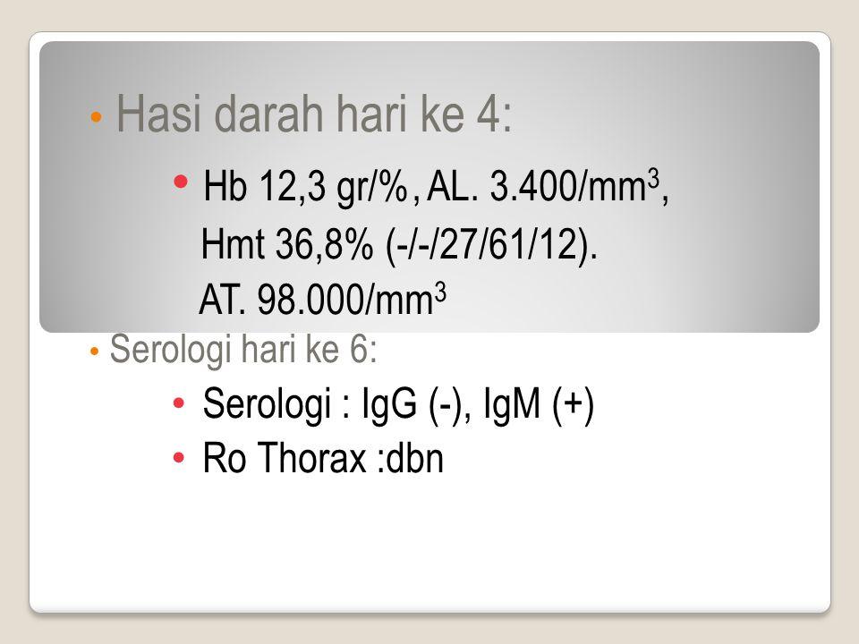 Hasi darah hari ke 4: Hb 12,3 gr/%, AL. 3.400/mm 3, Hmt 36,8% (-/-/27/61/12).