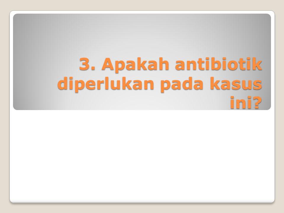 3. Apakah antibiotik diperlukan pada kasus ini?