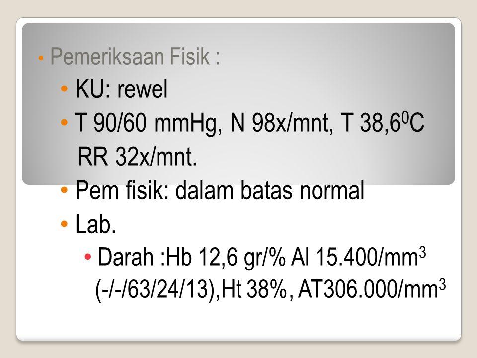 Pemeriksaan Fisik : KU: rewel T 90/60 mmHg, N 98x/mnt, T 38,6 0 C RR 32x/mnt.