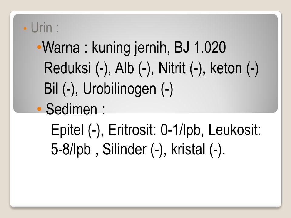Urin : Warna : kuning jernih, BJ 1.020 Reduksi (-), Alb (-), Nitrit (-), keton (-) Bil (-), Urobilinogen (-) Sedimen : Epitel (-), Eritrosit: 0-1/lpb, Leukosit: 5-8/lpb, Silinder (-), kristal (-).