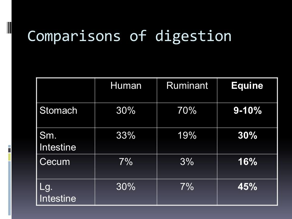Comparisons of digestion HumanRuminantEquine Stomach30%70%9-10% Sm. Intestine 33%19%30% Cecum7%3%16% Lg. Intestine 30%7%45%
