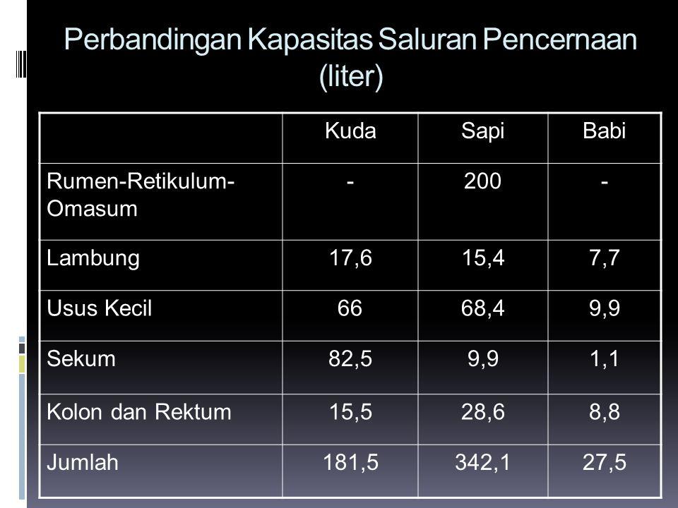Perbandingan Kapasitas Saluran Pencernaan (liter) KudaSapiBabi Rumen-Retikulum- Omasum -200- Lambung17,615,47,7 Usus Kecil6668,49,9 Sekum82,59,91,1 Ko