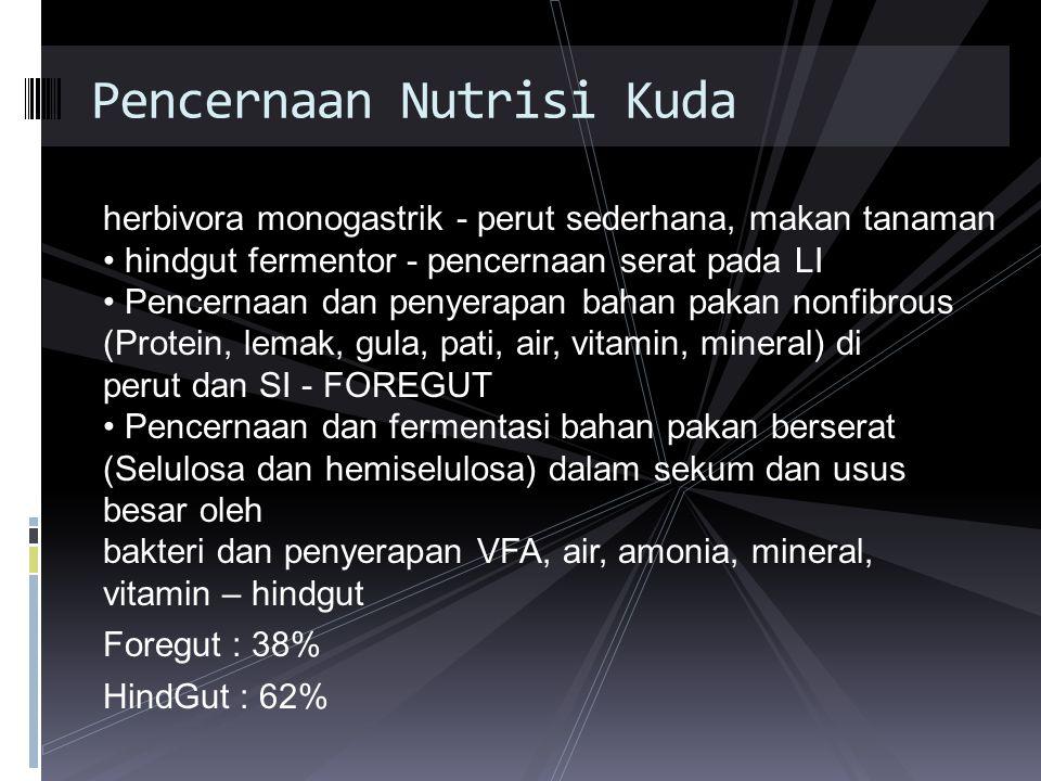 herbivora monogastrik - perut sederhana, makan tanaman hindgut fermentor - pencernaan serat pada LI Pencernaan dan penyerapan bahan pakan nonfibrous (