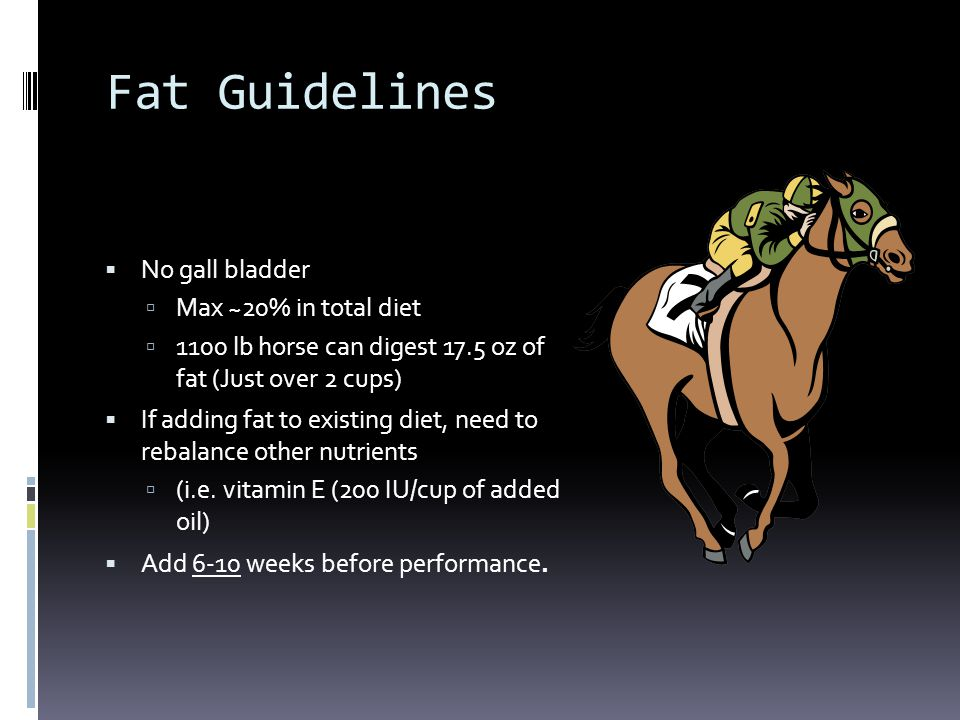Fat Guidelines  No gall bladder  Max ~20% in total diet  1100 lb horse can digest 17.5 oz of fat (Just over 2 cups)  If adding fat to existing die