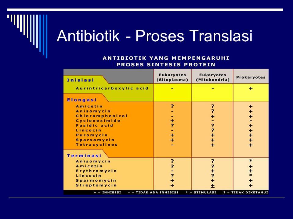 Antibiotik - Proses Translasi