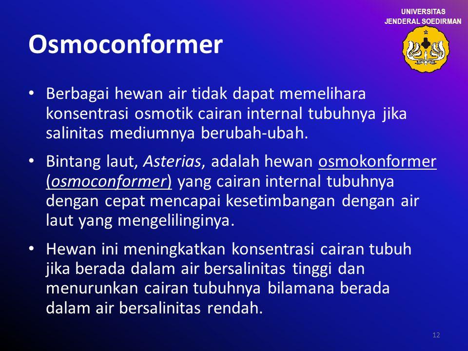 12 Osmoconformer Berbagai hewan air tidak dapat memelihara konsentrasi osmotik cairan internal tubuhnya jika salinitas mediumnya berubah-ubah. Bintang