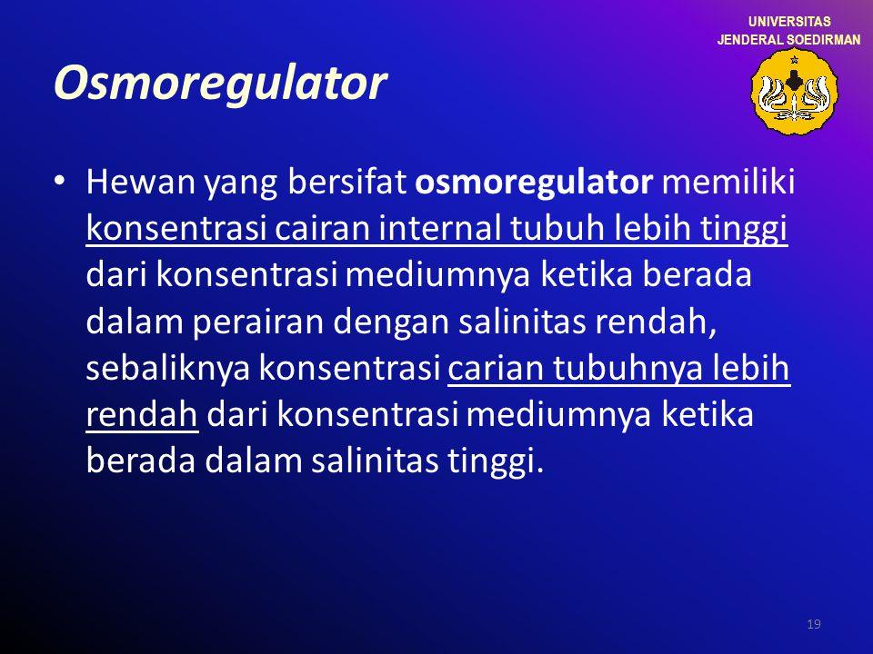 19 Osmoregulator Hewan yang bersifat osmoregulator memiliki konsentrasi cairan internal tubuh lebih tinggi dari konsentrasi mediumnya ketika berada da