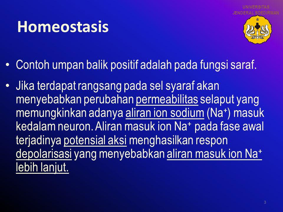 3 Homeostasis Contoh umpan balik positif adalah pada fungsi saraf. Jika terdapat rangsang pada sel syaraf akan menyebabkan perubahan permeabilitas sel