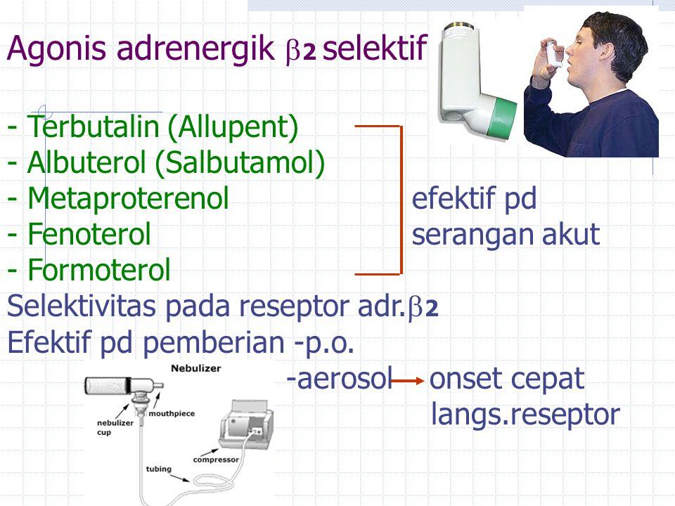 Agonis adrenergik  2 selektif - Terbutalin (Allupent) - Albuterol (Salbutamol) - Metaproterenolefektif pd - Fenoterolserangan akut - Formoterol Selek