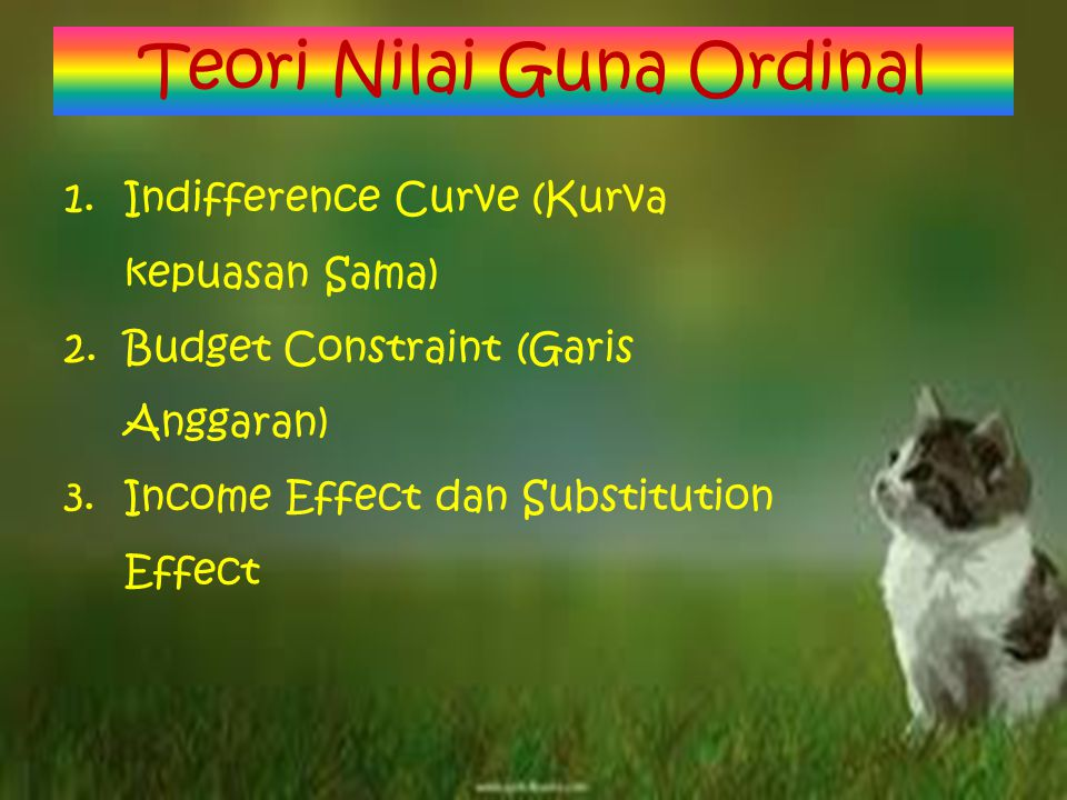 1.Indifference Curve (Kurva kepuasan Sama) 2.Budget Constraint (Garis Anggaran) 3.Income Effect dan Substitution Effect Teori Nilai Guna Ordinal