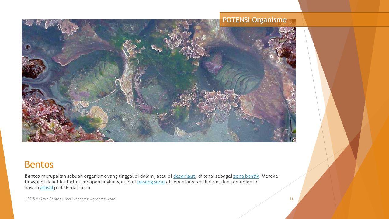 Bentos Bentos merupakan sebuah organisme yang tinggal di dalam, atau di dasar laut, dikenal sebagai zona bentik. Mereka tinggal di dekat laut atau end