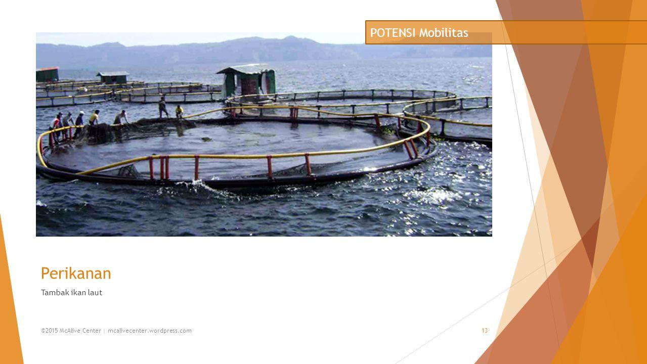 Perikanan Tambak ikan laut POTENSI Mobilitas ©2015 McAlive Center | mcalivecenter.wordpress.com13