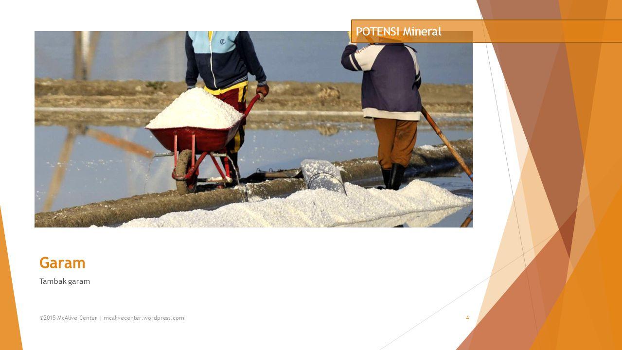 Minyak Bumi Kilang minyak bumi lepas pantai POTENSI Mineral ©2015 McAlive Center | mcalivecenter.wordpress.com5