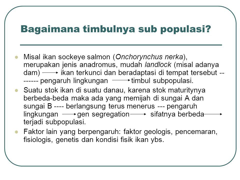 Bagaimana timbulnya sub populasi? Misal ikan sockeye salmon (Onchorynchus nerka), merupakan jenis anadromus, mudah landlock (misal adanya dam) ikan te