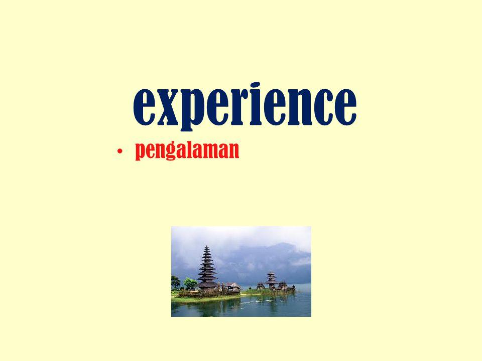 experience pengalaman