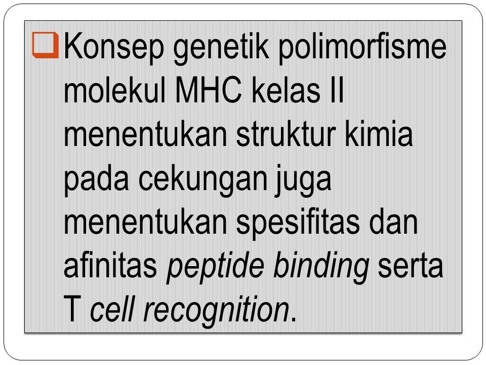  Konsep genetik polimorfisme molekul MHC kelas II menentukan struktur kimia pada cekungan juga menentukan spesifitas dan afinitas peptide binding ser
