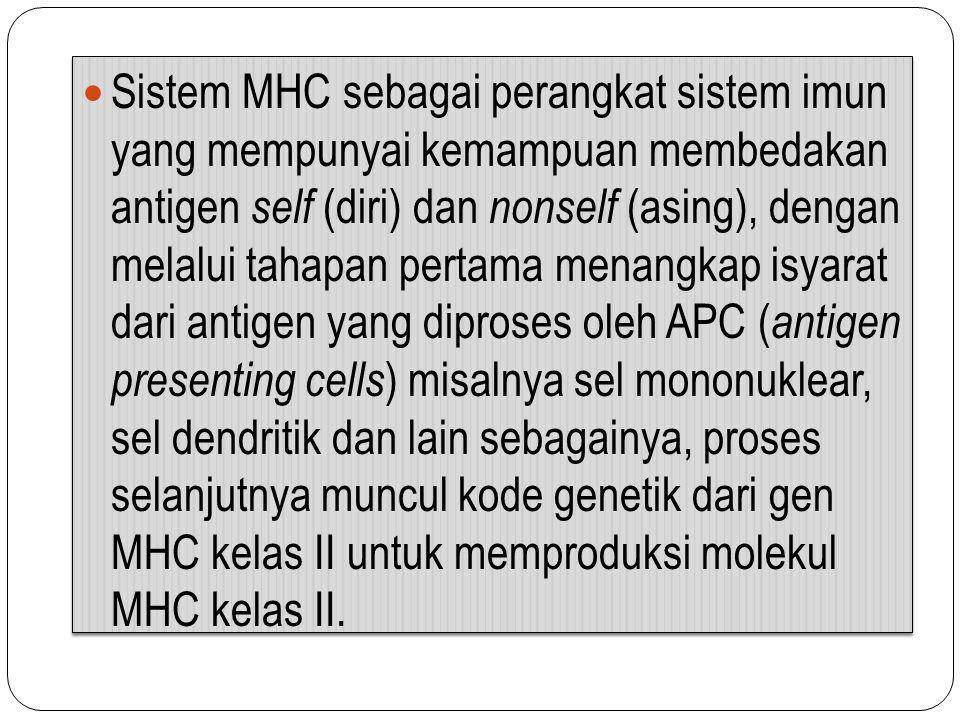 Sistem MHC sebagai perangkat sistem imun yang mempunyai kemampuan membedakan antigen self (diri) dan nonself (asing), dengan melalui tahapan pertama m