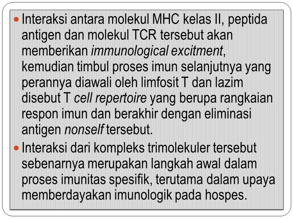 Interaksi antara molekul MHC kelas II, peptida antigen dan molekul TCR tersebut akan memberikan immunological excitment, kemudian timbul proses imun s