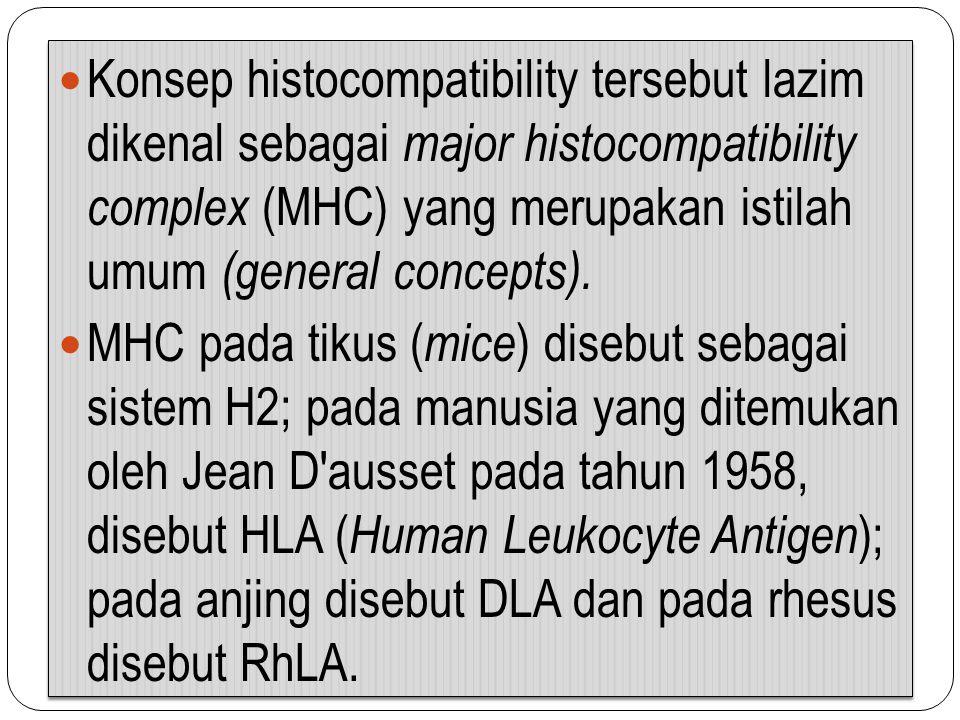 Konsep histocompatibility tersebut lazim dikenal sebagai major histocompatibility complex (MHC) yang merupakan istilah umum (general concepts). MHC pa