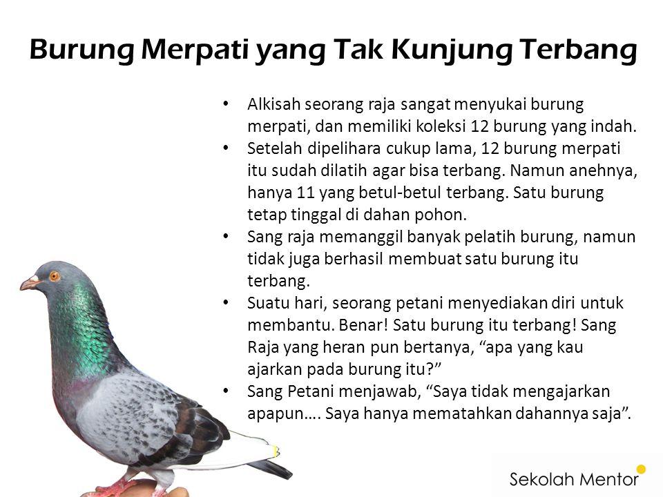 Burung Merpati yang Tak Kunjung Terbang Alkisah seorang raja sangat menyukai burung merpati, dan memiliki koleksi 12 burung yang indah.