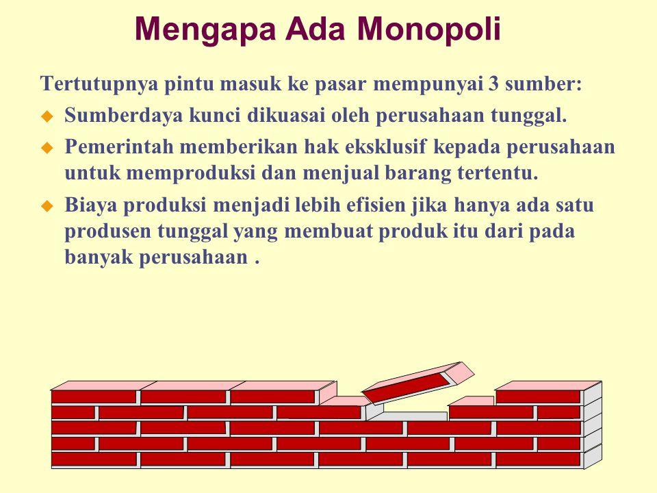 Mengapa Ada Monopoli Tertutupnya pintu masuk ke pasar mempunyai 3 sumber: u Sumberdaya kunci dikuasai oleh perusahaan tunggal. u Pemerintah memberikan