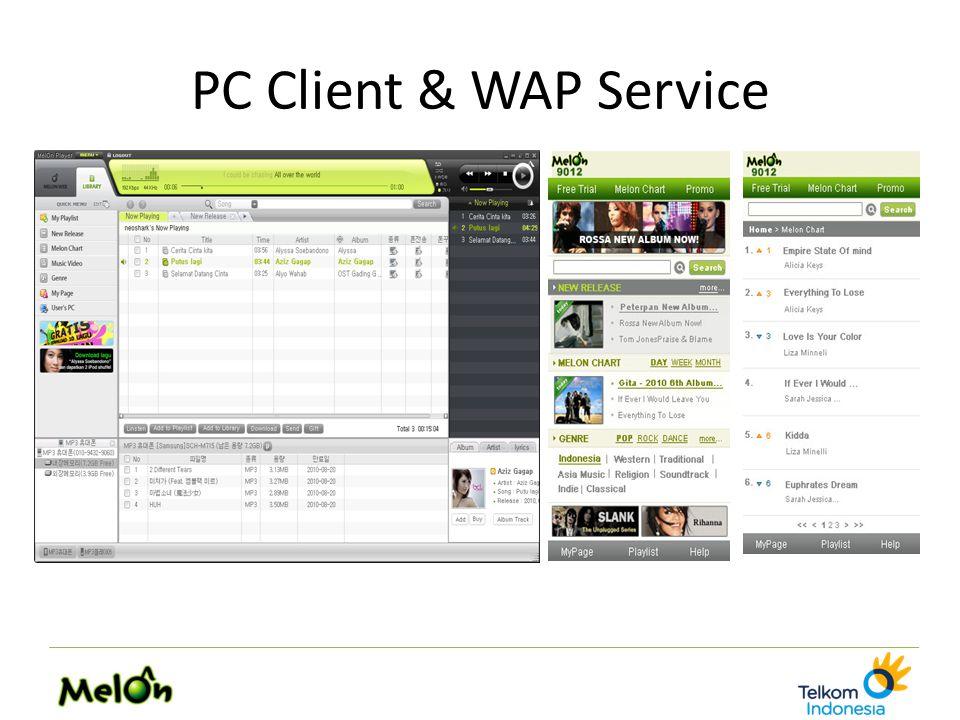 PC Client & WAP Service