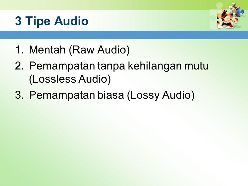 3 Tipe Audio 1.Mentah (Raw Audio) 2.Pemampatan tanpa kehilangan mutu (Lossless Audio) 3.Pemampatan biasa (Lossy Audio)