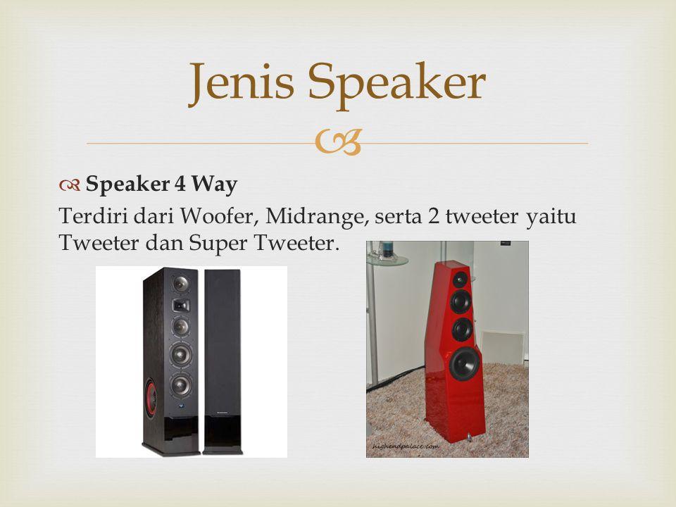   Speaker 4 Way Terdiri dari Woofer, Midrange, serta 2 tweeter yaitu Tweeter dan Super Tweeter. Jenis Speaker