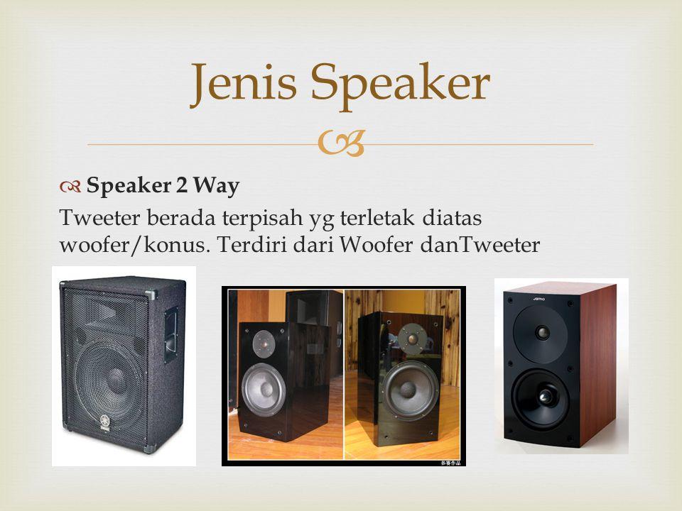   Speaker 2 Way Tweeter berada terpisah yg terletak diatas woofer/konus. Terdiri dari Woofer danTweeter Jenis Speaker