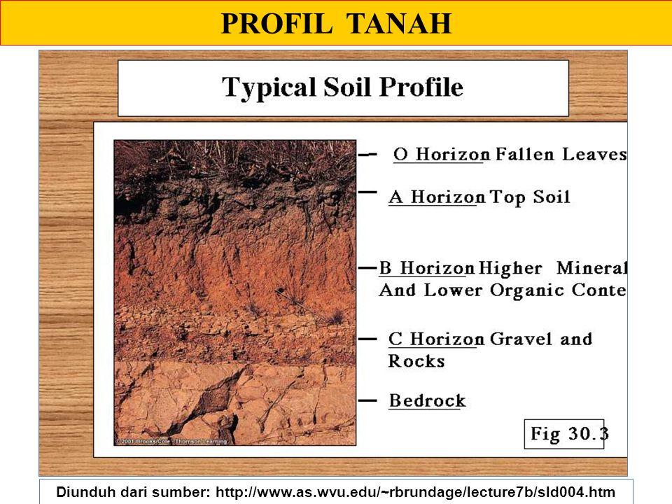 PROFIL TANAH Diunduh dari sumber: http://www.as.wvu.edu/~rbrundage/lecture7b/sld004.htm