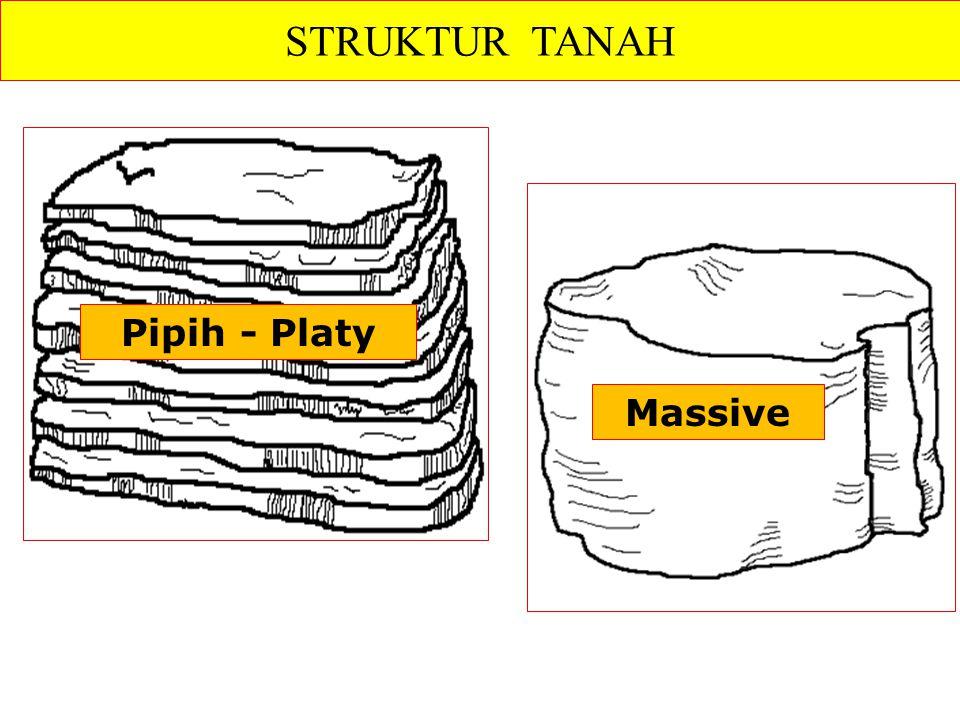 Pipih - Platy STRUKTUR TANAH Massive