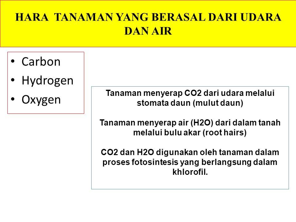 HARA TANAMAN YANG BERASAL DARI UDARA DAN AIR Carbon Hydrogen Oxygen Tanaman menyerap CO2 dari udara melalui stomata daun (mulut daun) Tanaman menyerap air (H2O) dari dalam tanah melalui bulu akar (root hairs) CO2 dan H2O digunakan oleh tanaman dalam proses fotosintesis yang berlangsung dalam khlorofil.