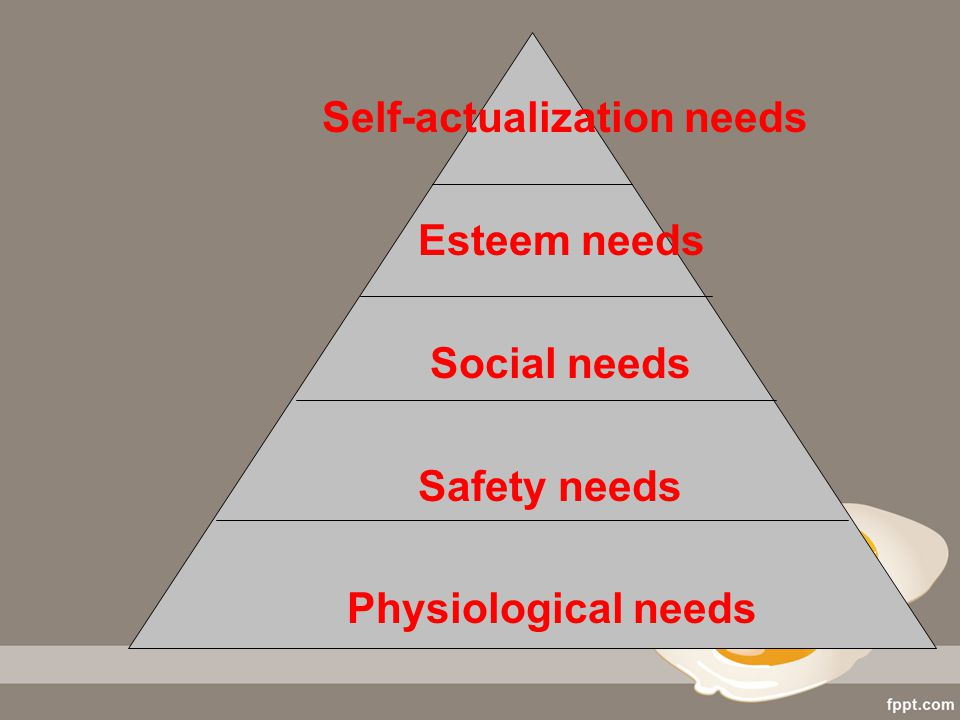 Self-actualization needs Esteem needs Social needs Safety needs Physiological needs
