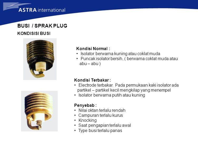 Kondisi Normal : Isolator berwarna kuning atau coklat muda Puncak isolator bersih, ( berwarna coklat muda atau abu – abu ) Kondisi Terbakar : Electrode terbakar.