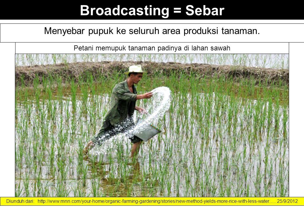Broadcasting = Sebar Menyebar pupuk ke seluruh area produksi tanaman. Petani memupuk tanaman padinya di lahan sawah Diunduh dari: http://www.mnn.com/y