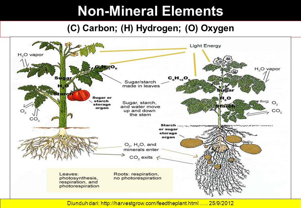 Non-Mineral Elements (C) Carbon; (H) Hydrogen; (O) Oxygen Diunduh dari: http://harvestgrow.com/feedtheplant.html ….. 25/9/2012