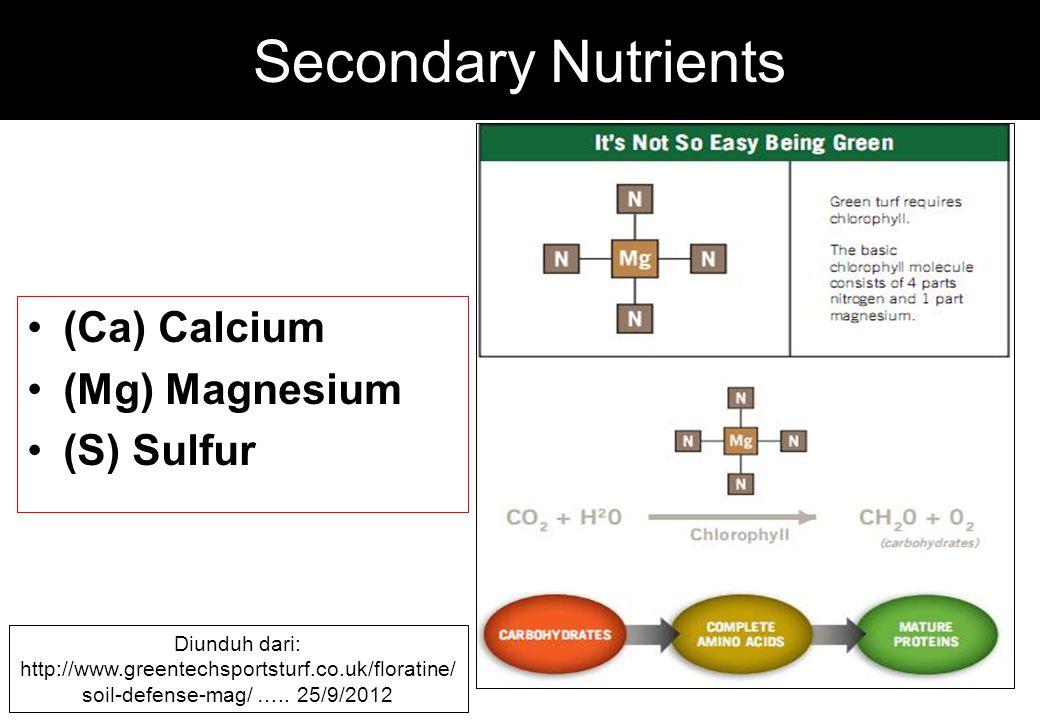 Secondary Nutrients (Ca) Calcium (Mg) Magnesium (S) Sulfur Diunduh dari: http://www.greentechsportsturf.co.uk/floratine/ soil-defense-mag/ ….. 25/9/20