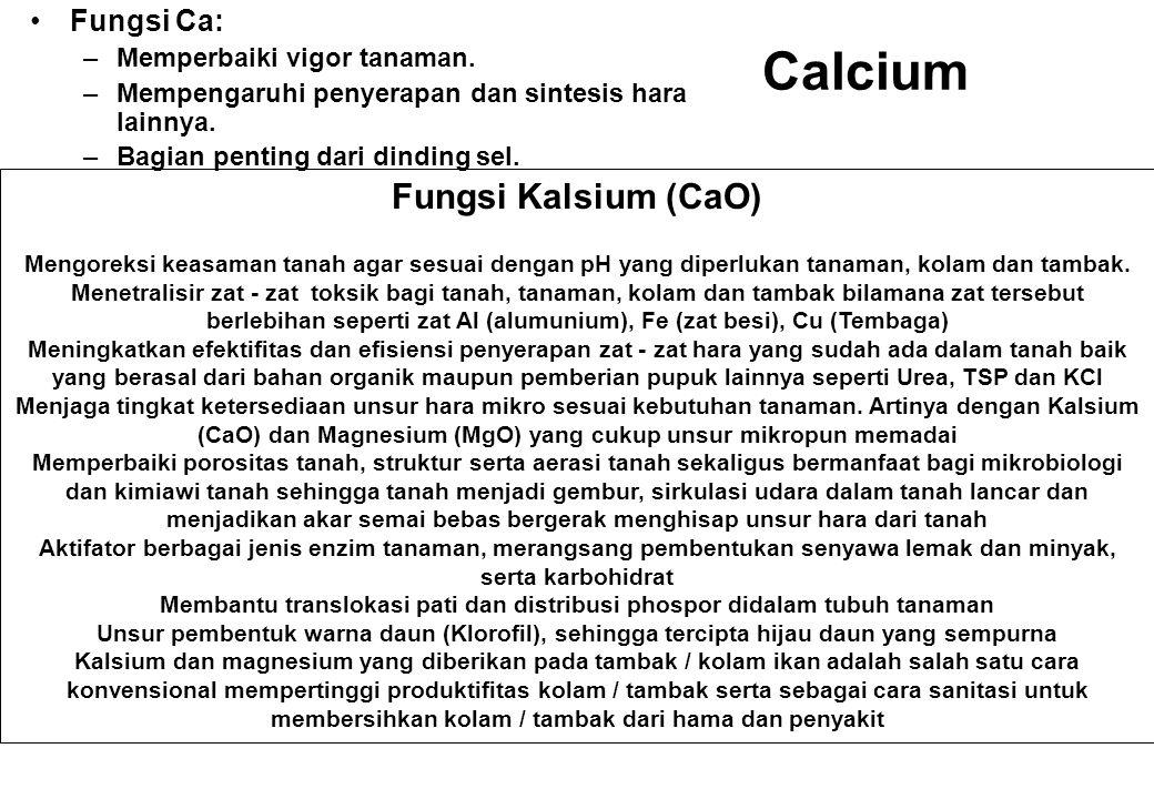 Calcium Fungsi Ca: –Memperbaiki vigor tanaman. –Mempengaruhi penyerapan dan sintesis hara lainnya. –Bagian penting dari dinding sel. Fungsi Kalsium (C