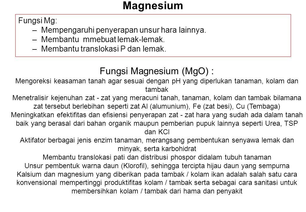 Magnesium Fungsi Mg: –Mempengaruhi penyerapan unsur hara lainnya. –Membantu mmebuat lemak-lemak. –Membantu translokasi P dan lemak. Fungsi Magnesium (