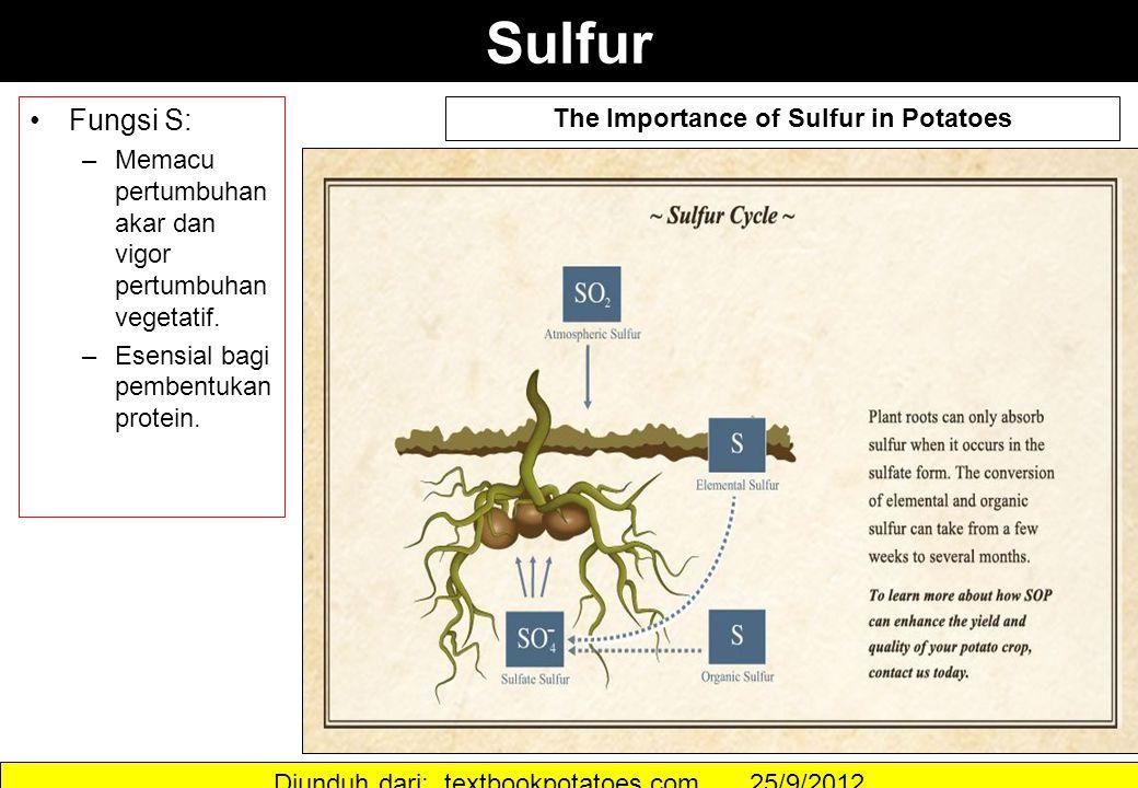 Sulfur Fungsi S: –Memacu pertumbuhan akar dan vigor pertumbuhan vegetatif. –Esensial bagi pembentukan protein. The Importance of Sulfur in Potatoes Di