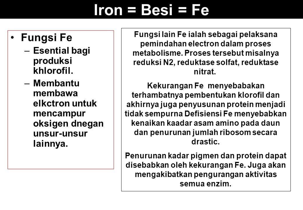 Iron = Besi = Fe Fungsi Fe –Esential bagi produksi khlorofil. –Membantu membawa elkctron untuk mencampur oksigen dnegan unsur-unsur lainnya. Fungsi la